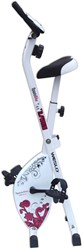 Weslo S Folding Bike Hometrainer