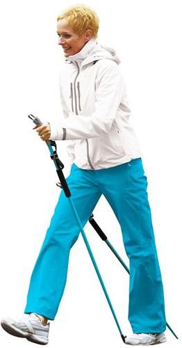 Gymstick force Nordic Walking stokken met DVD