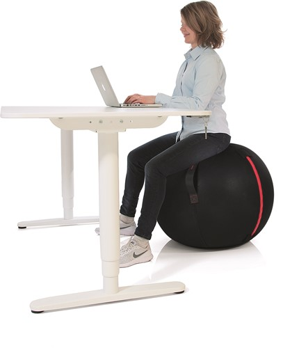 Gymstick Office Ball - 65 cm - Met Online Trainingsvideo's-3