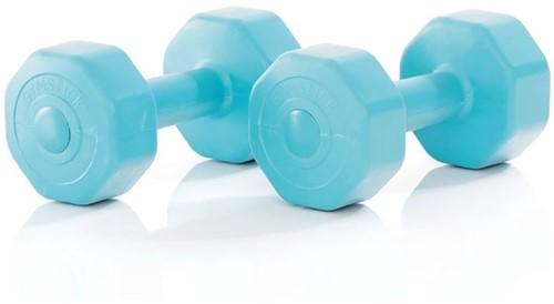 Gymstick Active Vinyl Dumbells - Met Online Trainingsvideo's - 2 x 1 kg