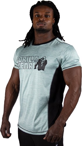 Gorilla Wear Austin T-shirt - Light Green-2