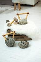 Fitrocks-dumbbells-sfeerbeeld