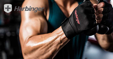 Fitnessbenelux - Home - Harbinger