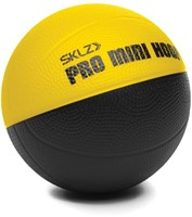 Pro Mini Hoop Micro Basket
