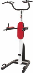 Weider Pro PT 800 Power Tower Homegym