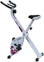 Weslo S Folding Bike Hometrainer