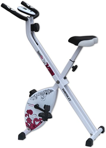 Weslo S Folding Bike Hometrainer-2