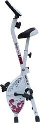 Weslo S Folding Bike