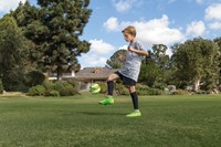 sklz star kick touch trainer