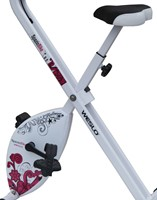 Weslo S Folding Bike Hometrainer-3